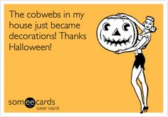 Thanks cobwebs for #Halloween decorations on the cheap! #humor