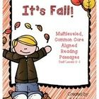 It's Fall! is a multileveled passages set. Included in this set are 4 passages on the same topic at four different text levels, C- I. This allows a...