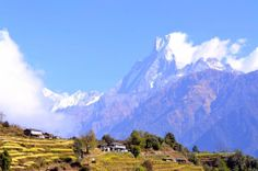 View of the Machapuchhre or Machapuchare in Nepalese language or Fish Tail peak in Annapurna mountains. This photo was taken from Taulung village near Chomrong on the ABC trail or Annapurna Base Camp trek.