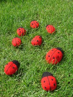 Free pattern: Lovely Knitted Ladybird