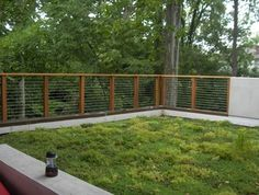 Woodland Heights House - modern - Landscape - Richmond - Watershed Architects