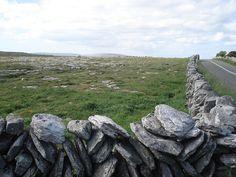 Stone dry walls in #Connemara #Galway #Ireland