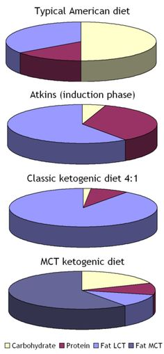 Ketogenic diets pie