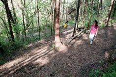 June 1 is National Trails Day, and thousands of kids and adults will celebrate America's tangle of trails by taking a walk in the woods.   Xplor
