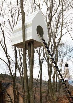 Bird house for humans. By Nendo. birdhouses, japan, tree houses, treehous, bird apart, trees, apartments, birds, design