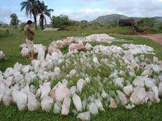 Naturally forming Lemurian Crystal Garden in Brazil
