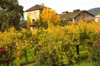 www.mobilewinedeals.com likes this vineyard