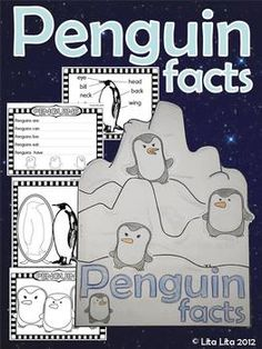 Penguins Facts Fold and Learn English