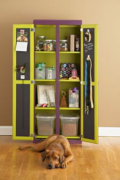 Dog storage - needs a couple of rails for clothes and its perfect