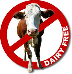 Dairy Alternatives & #DairyFree Substitutes | G-Free Foodie #GlutenFree