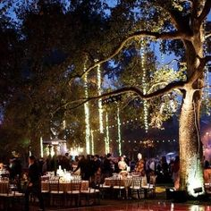 An epic, all day, multi-cultural wedding with a truly magical reception. Strung lights TO DIE for!