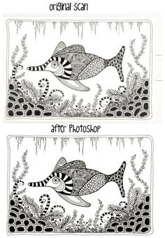 Before and after fish