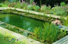 Slightly obsessed with this natural, pond inspired pool.  Going green can be beautiful!!