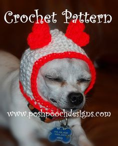 Crochet Pattern  Hood Dog Hat  Small Dog Hood  by poshpoochdesigns, $3.99