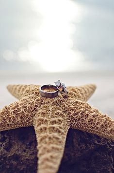 Perfect photo of the rings for a destination wedding! | Photo by http://whiteivoryphotography.com