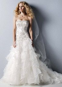 """What you think Brenda?  The epitome of alluring beauty and exquisite design, this beaded organza wedding dress is """"the one""""! Strapless beaded organza ball gown features luxurious embroidered lace bodice. Striking drop waist and dramatic ruffled skirt will have all eyes on you. Chapel train. Sizes 0-14. Ivory available in stores. White available for Special Order in stores. Also available without train, Style NTCWG546 (Special Order only). Petite: Style 7CWG546. Sizes 0P-14P. $1,350. (Special Order only). Woman: Style 8CWG546. Sizes 16W-26W. $1,450. (Special Order only). Fully lined. Back zip. Imported polyester. Dry clean. To preserve your wedding dreams, try our Wedding Gown Preservation Kit.Train that extends one and a third yards (about 4 feet) from the waist.The ball gown is a classic shape with a fitted bodice and very full skirt that brushes the floor. The pick-up skirt is a modern interpretation of this silhouette.A popular neckline for brides seeking a stylish and versatile look (offering unlimited jewelry and accessory options).A delicate, sheer fabric, often layered or worn over another fabric because of its transparent quality.A delicate, sheer fabric, often layered or worn over another fabric because of its transparent quality."""