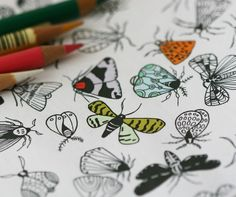Colour In Collaboration No. 3 - Printable Coloring Pages in Five Designs - Night Butterflies, Sticks, Weather Pattern, Sea Shells, and Turtledoves