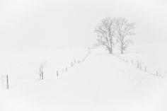Valerie-Jardin-Photography-Minimalist-Photography-91.jpg 600×400 pixels