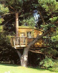 Cute Tree House....