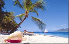 sand, anniversary, resorts, islands, palm island, beach, place, palms, island resort