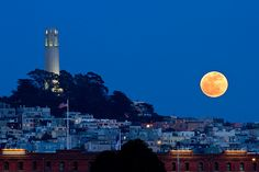 Coit Tower And Moon - San Francisco