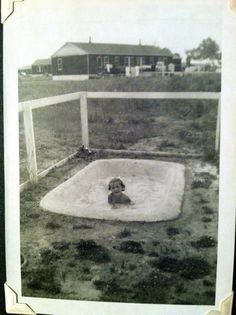 Bathing beauty in a homemade swimming pool. Circa 1949. Norfolk, Virginia.