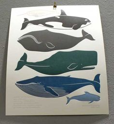 embossed whale poster