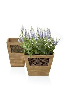 Wald Imports Set of 2 Vintage-Look Wooden Planters with Floral Metal Plate, Mocha Brown, http://www.myhabit.com/redirect?url=http%3A%2F%2Fwww.myhabit.com%2F%3F%23page%3Dd%26dept%3Dhome%26sale%3DA1RCBEG66RJKCS%26asin%3DB00812GG66%26cAsin%3DB00812GG66