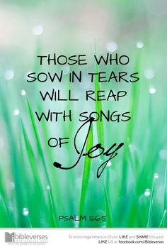 Those who sow in tears will reap with songs of joy. Psalm 126:5 (NIV1984)