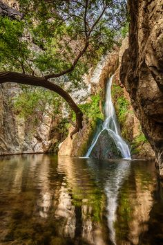 Darwin Falls Reflecting Pool, Death Valley National Park, California; photo by Greg Clure