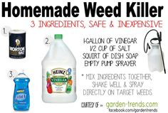 Garden Trends: HOMEMADE WEED KILLER RECIPE --  supposed to work on poison ivy too