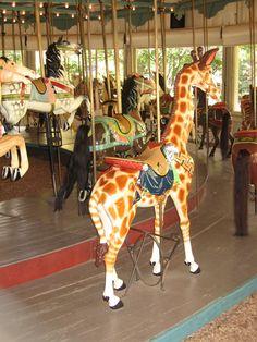 carniv, carousel giraff, parks, 1900, wooden carousel
