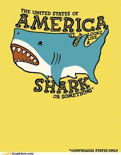 I love sharks.