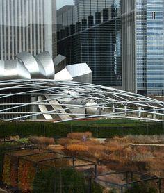 millennium park, luri garden, garden chicago