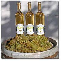 white wines, wineri visit, virginia wineri