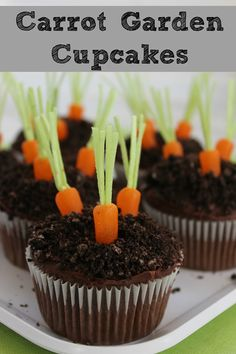 Pudding Filled Carrot Garden Cupcakes perfect for Spring or Easter!