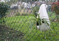Fence Planter by Technomud on Etsy  How cute is this? ♥