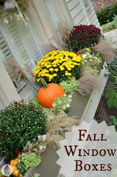 How to Decorate Fall Window Boxes :: HoosierHomemade.com