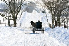 Amish Winter