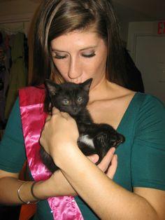 #truelove #kittens #love #cute #inlove