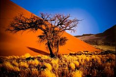 Sossusvlei - #namibia
