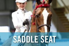 saddleseat riding