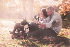 engagement pictures with pets