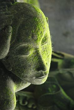 ♥ A moss covered stone statue