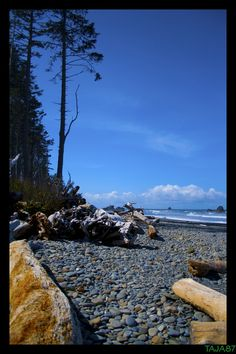 Ruby Beach in Washington State