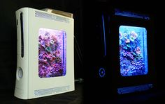 Convert an Old Xbox 360 into a Fish Tank