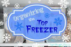 Organizing a Top Freezer at orgjunkie.com