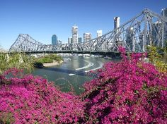 Brisbane City. QLD, Australia