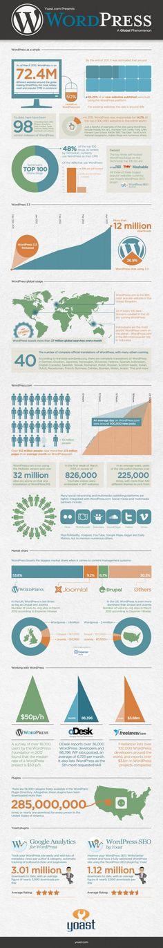 WordPress stats.
