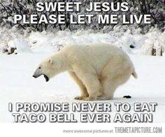I laughed so hard I think I stopped breathing!